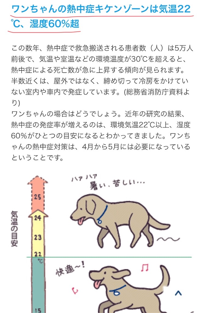 f:id:kai-koume:20180721094744j:image