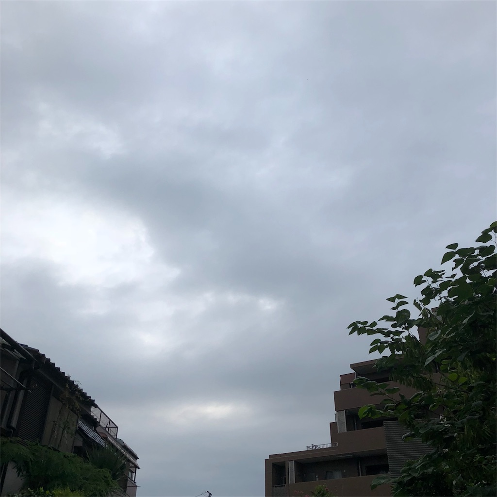 f:id:kai-koume:20180726074444j:image