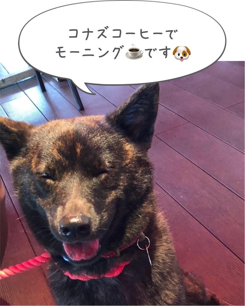f:id:kai-koume:20180805090936j:image