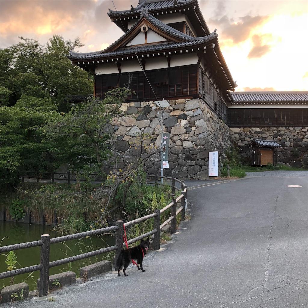 f:id:kai-koume:20180808202341j:image