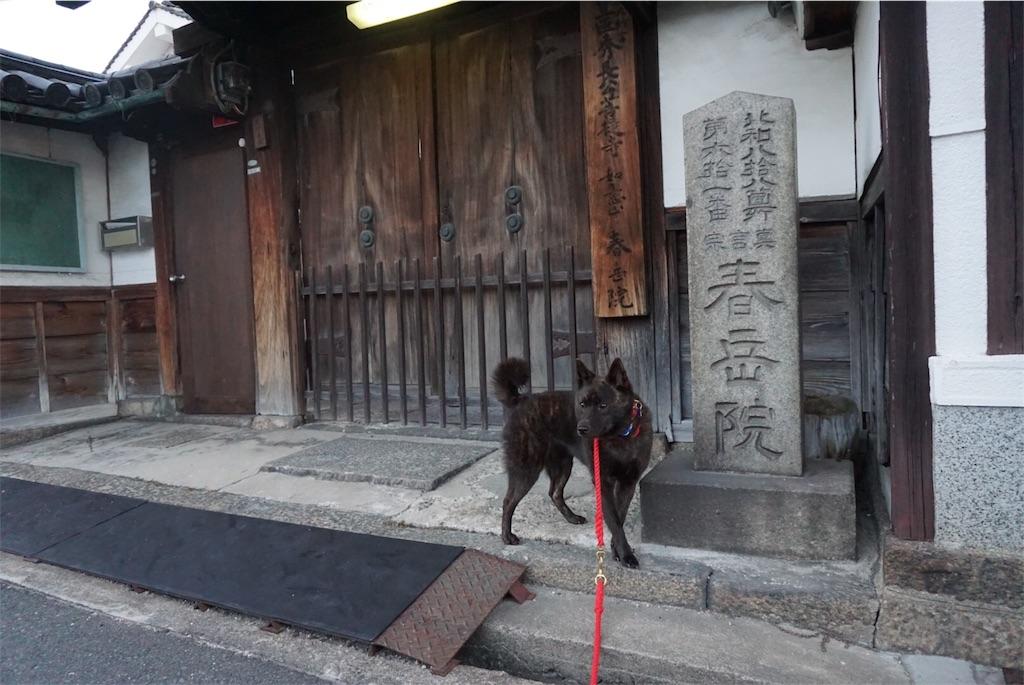 f:id:kai-koume:20180808202723j:image
