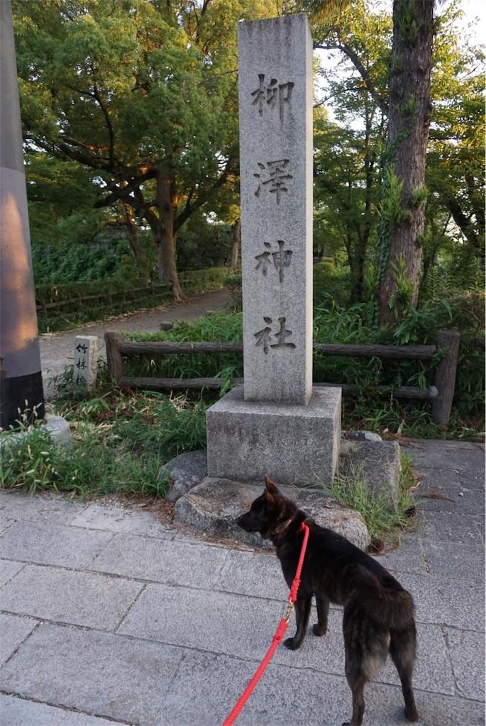 f:id:kai-koume:20180808202727j:image