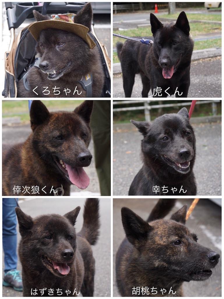 f:id:kai-koume:20180809224127j:image