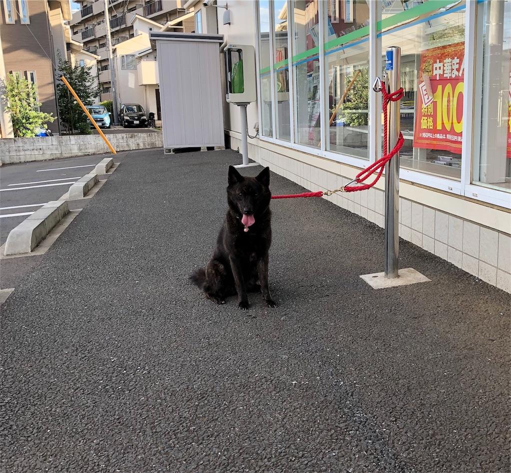 f:id:kai-koume:20180825092154j:image