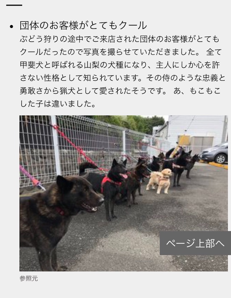 f:id:kai-koume:20180907074519j:image
