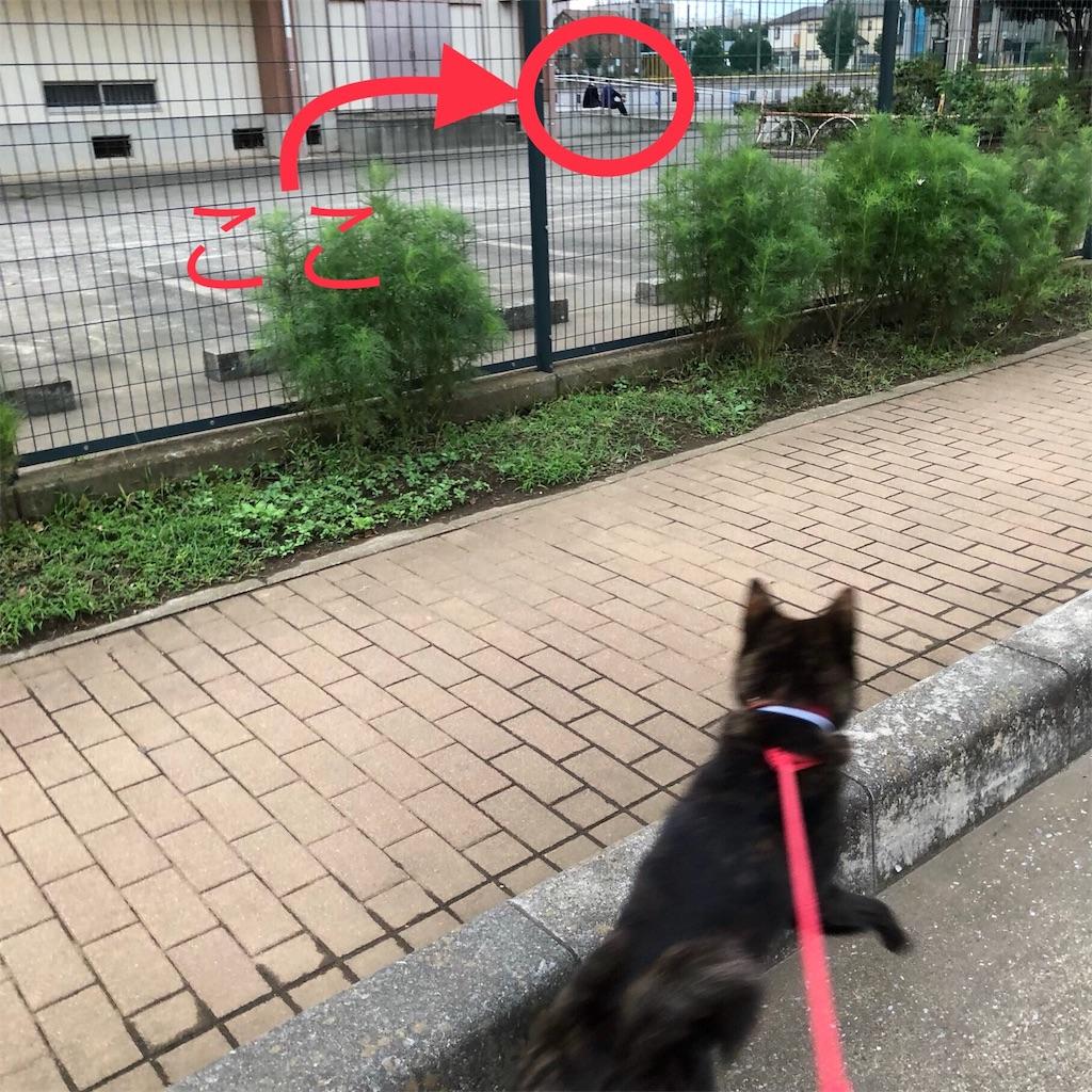 f:id:kai-koume:20180912082925j:image