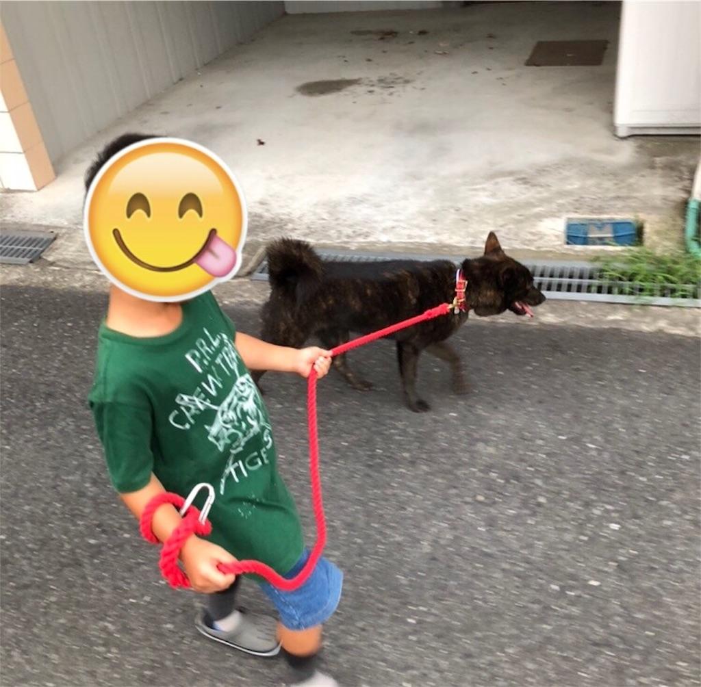 f:id:kai-koume:20180913071028j:image