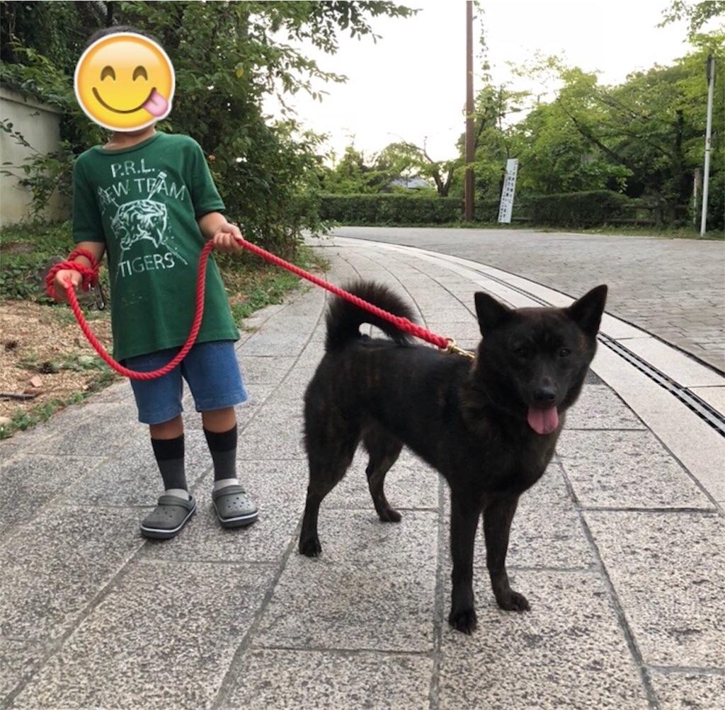 f:id:kai-koume:20180913071046j:image