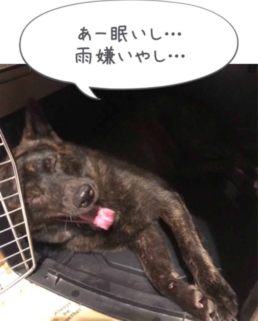 f:id:kai-koume:20180914074939j:image