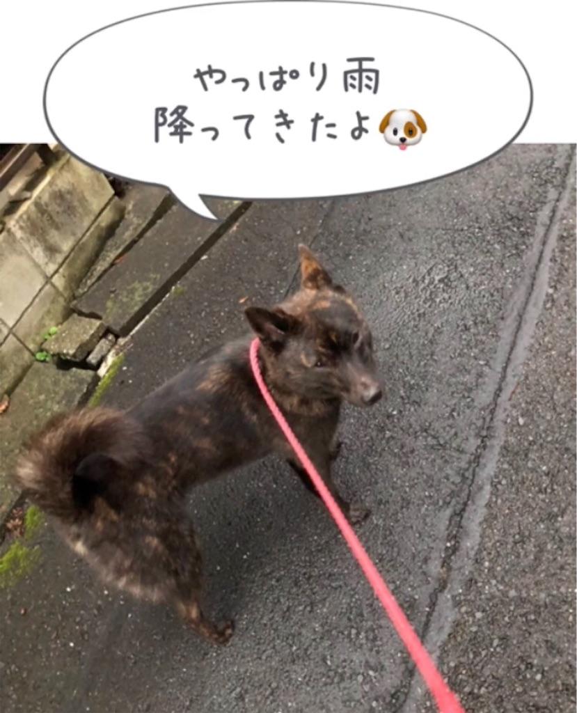f:id:kai-koume:20180914080707j:image