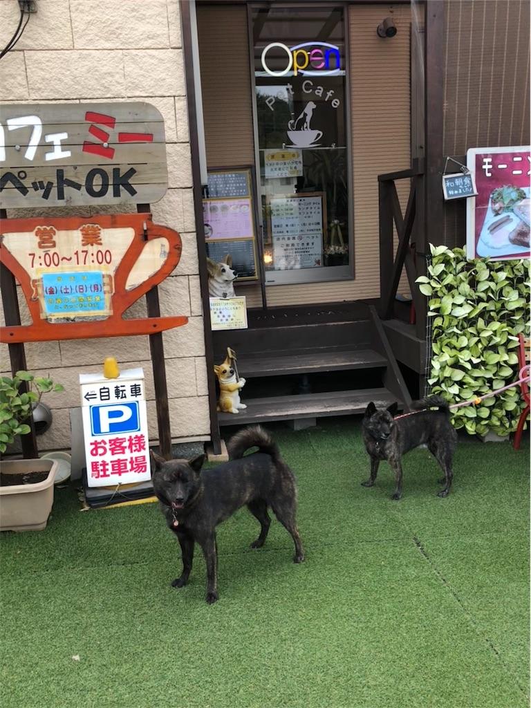 f:id:kai-koume:20180917090838j:image