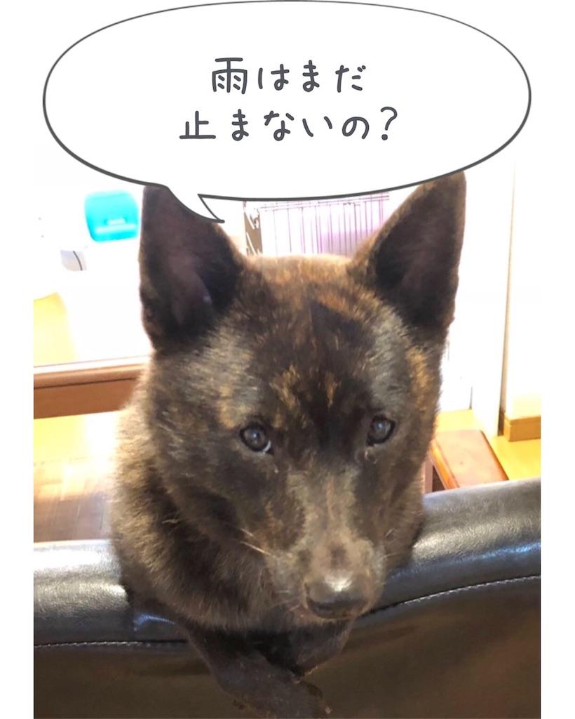 f:id:kai-koume:20180922090614j:image