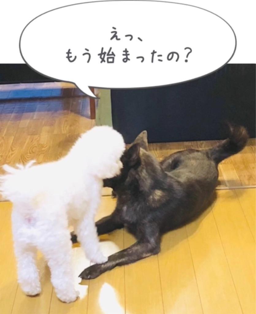 f:id:kai-koume:20181007091818j:image
