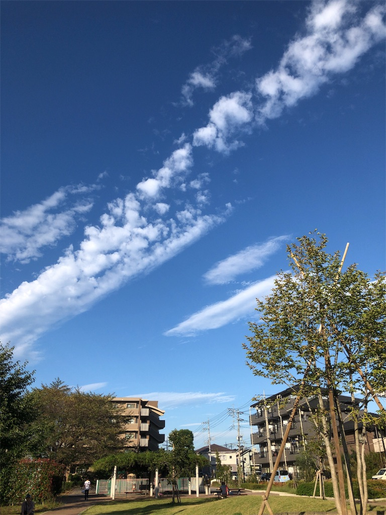 f:id:kai-koume:20181007135402j:image