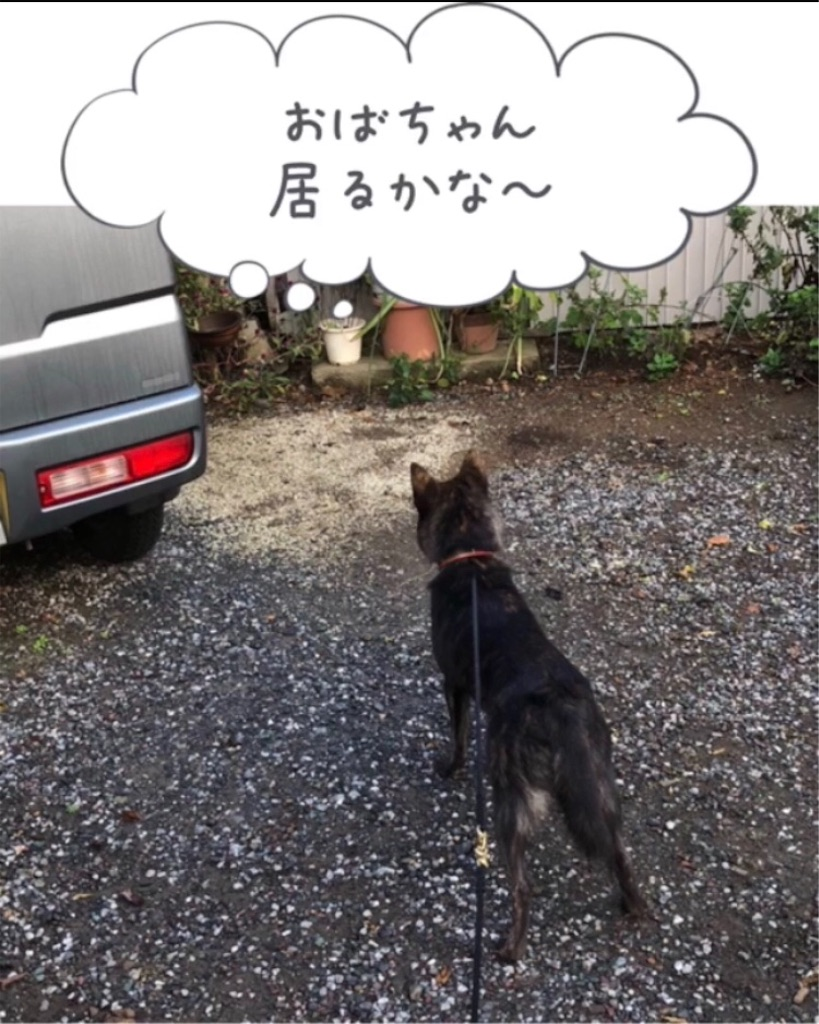 f:id:kai-koume:20181020090730j:image