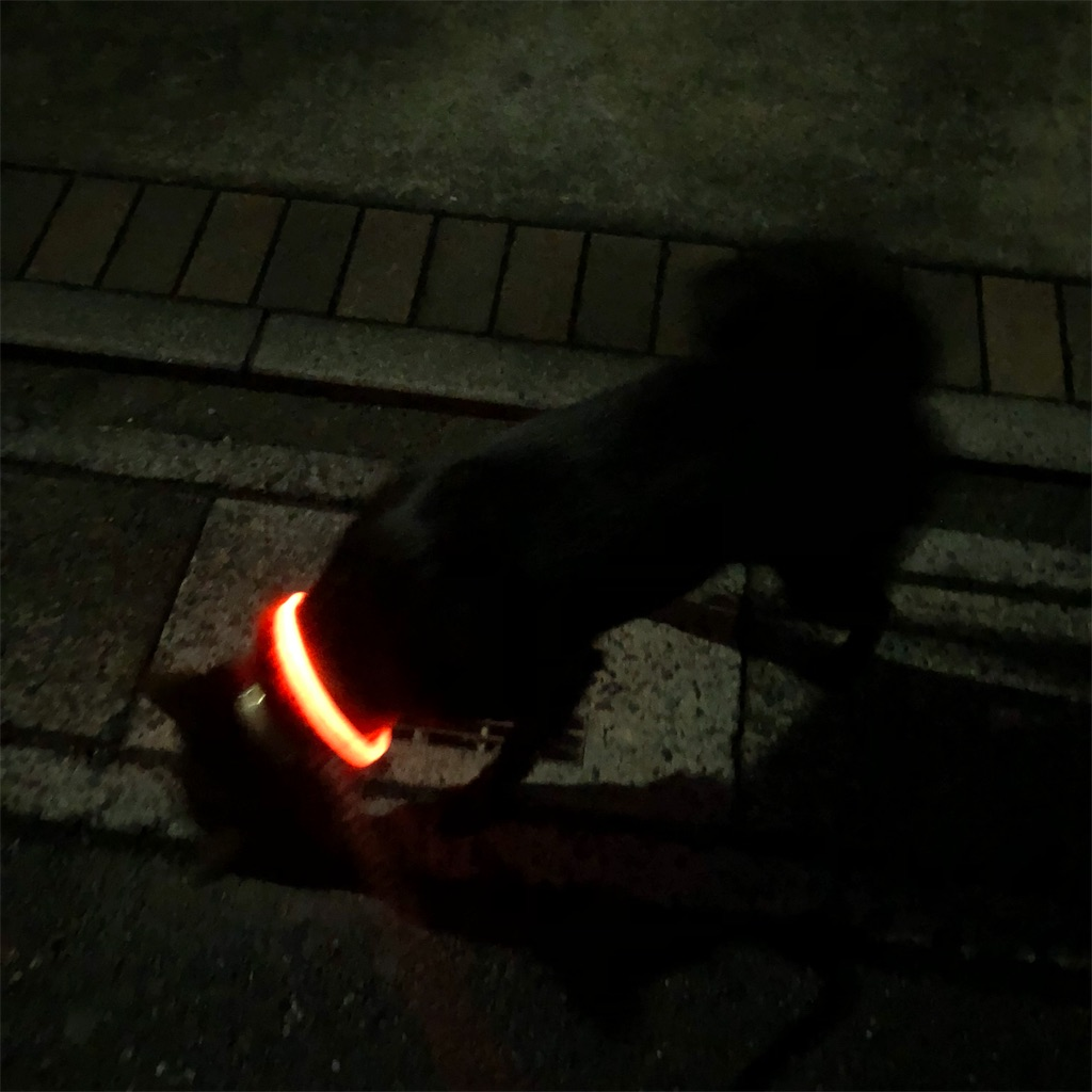 f:id:kai-koume:20181024065618j:image
