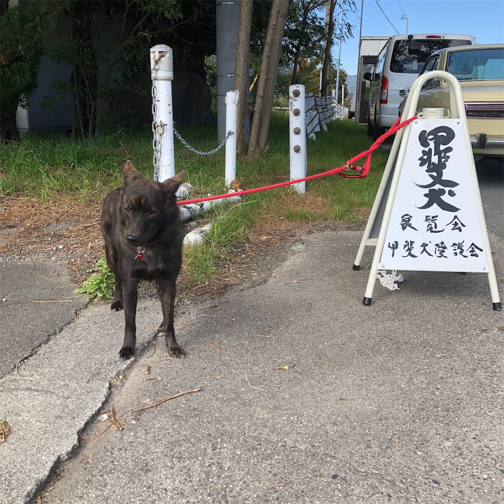 f:id:kai-koume:20181029062138j:image