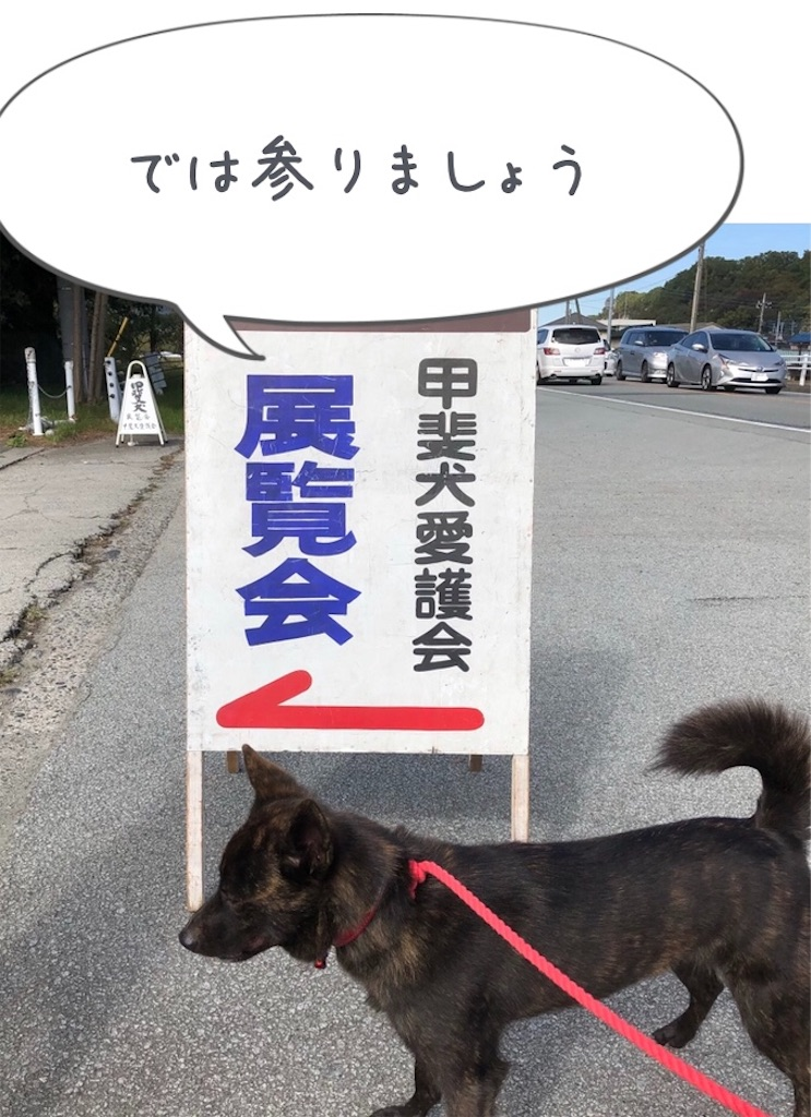 f:id:kai-koume:20181029064144j:image