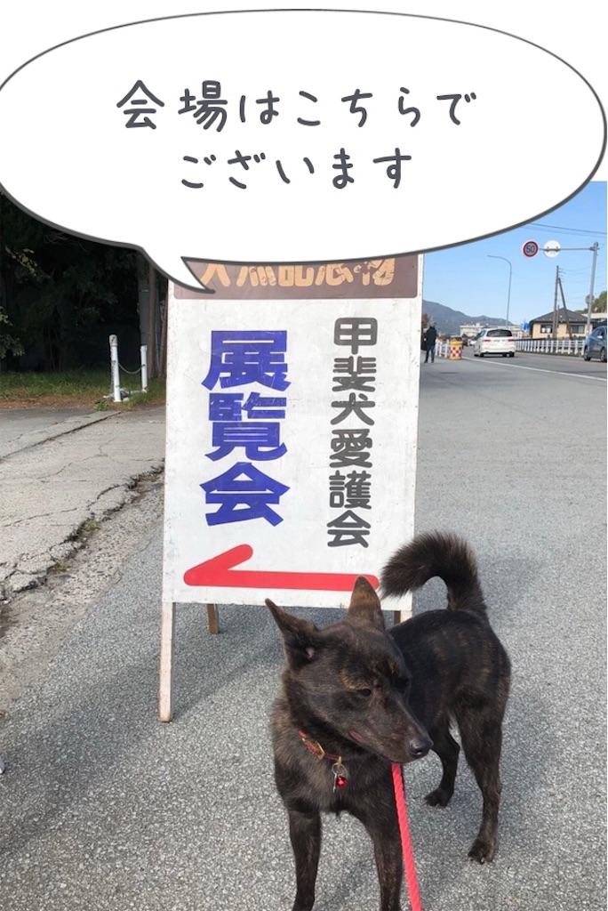 f:id:kai-koume:20181029064151j:image