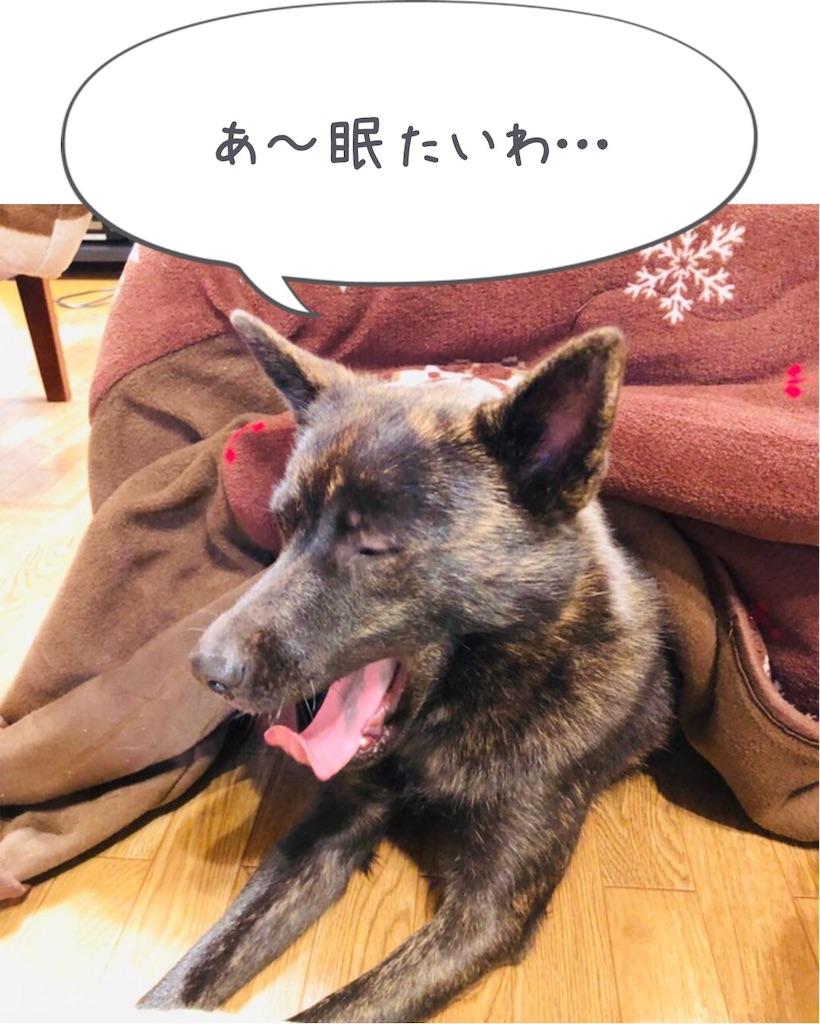f:id:kai-koume:20181110081005j:image