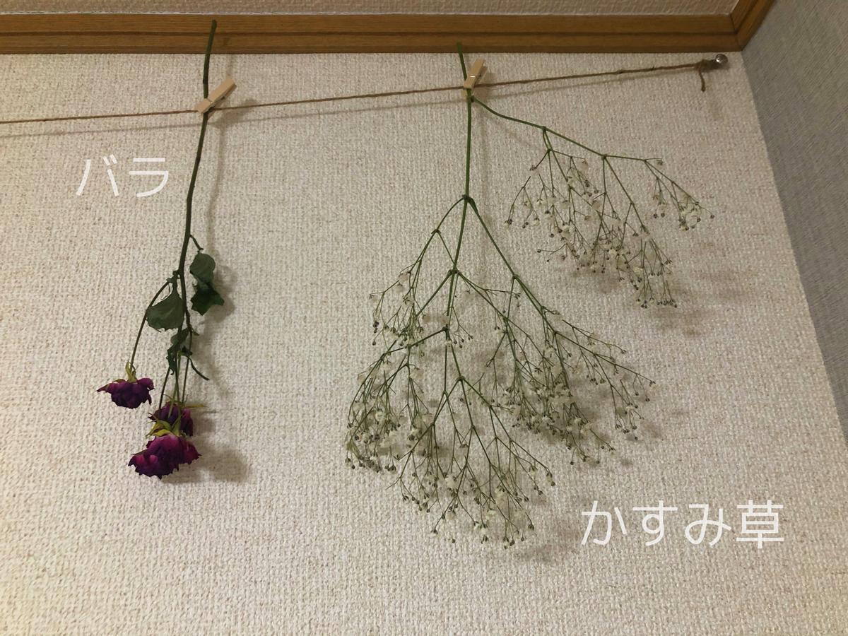 f:id:kai_t:20210116000429j:plain
