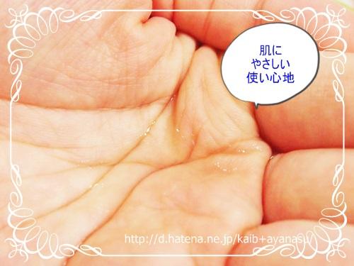 f:id:kaib:20130723083529j:image