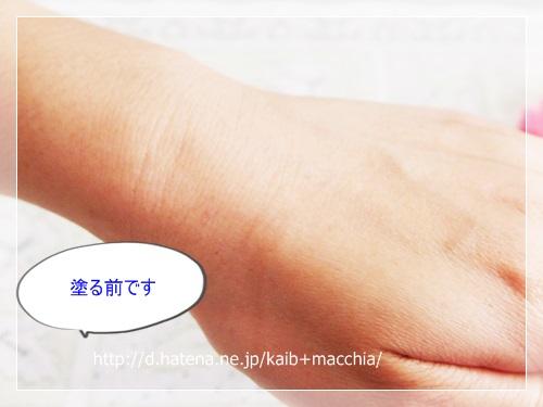 f:id:kaib:20130803101000j:image