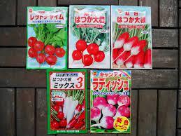 f:id:kaibashira-saki:20210627145745p:plain