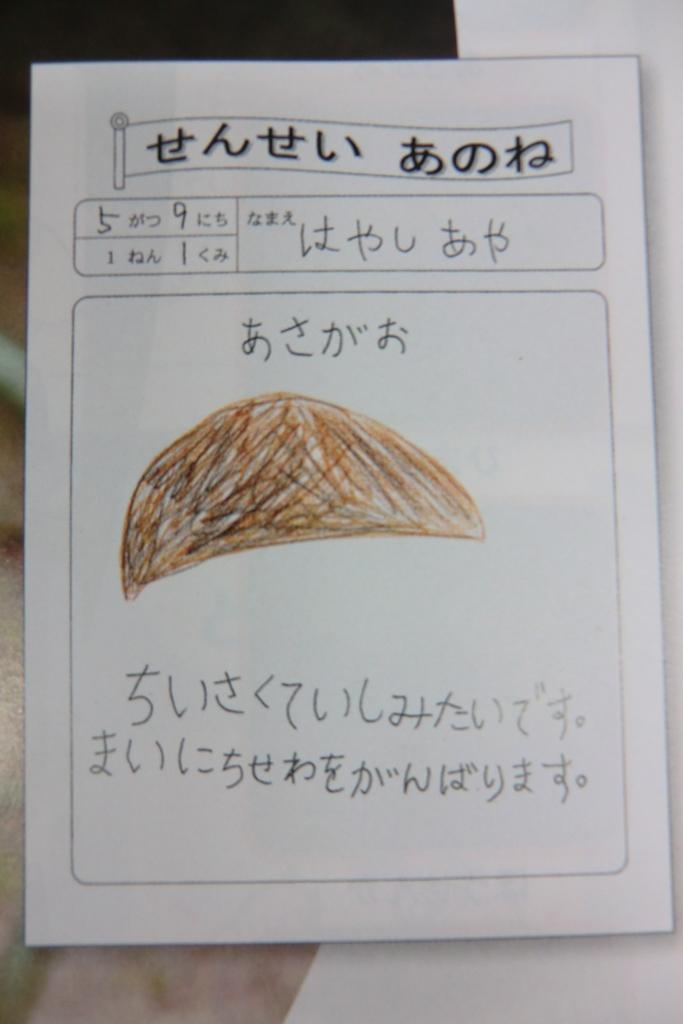 f:id:kaichinozomi:20160524181831j:plain