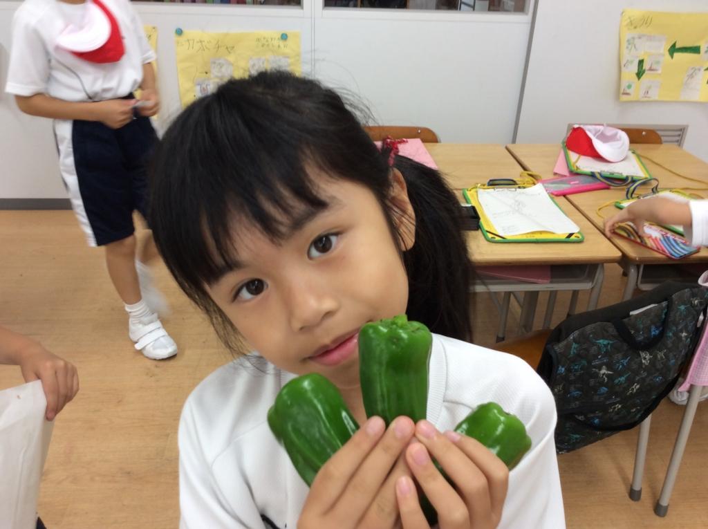 f:id:kaichinozomi:20160630083020j:plain