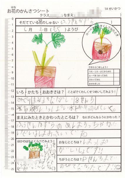 f:id:kaichinozomi:20160716155029j:plain