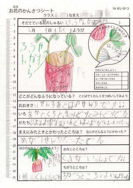 f:id:kaichinozomi:20160716155037j:plain