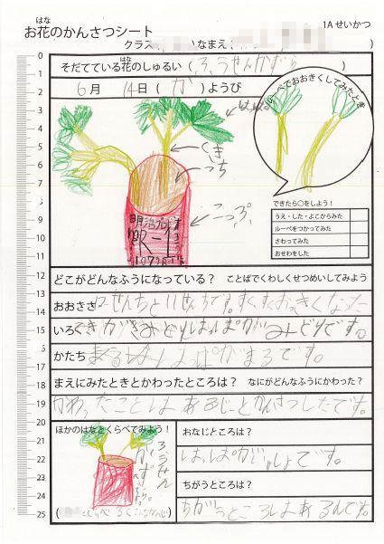 f:id:kaichinozomi:20160716155110j:plain