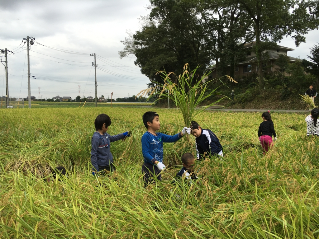 f:id:kaichinozomi:20160917182113j:plain