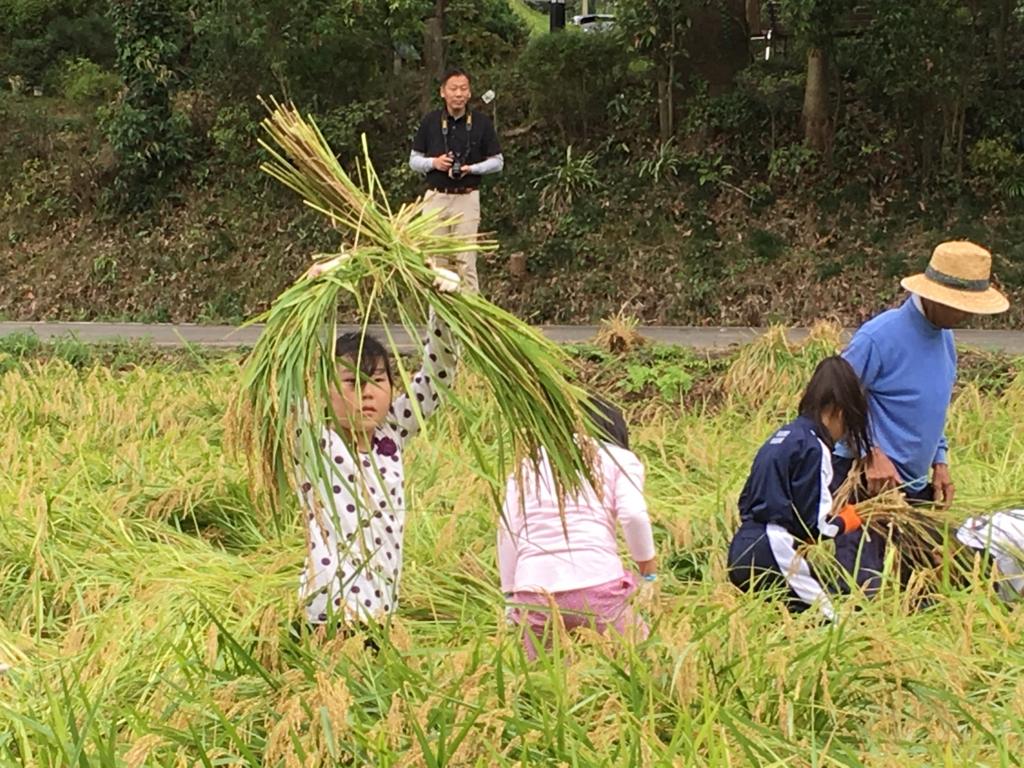 f:id:kaichinozomi:20160917182248j:plain