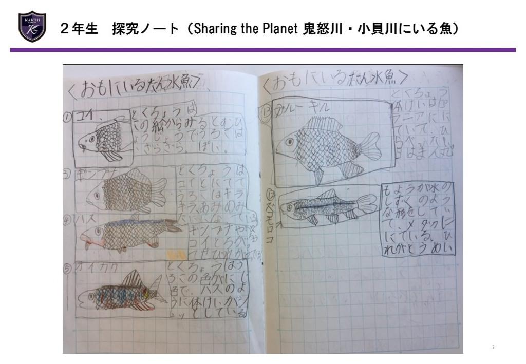 f:id:kaichinozomi:20161120102958j:plain