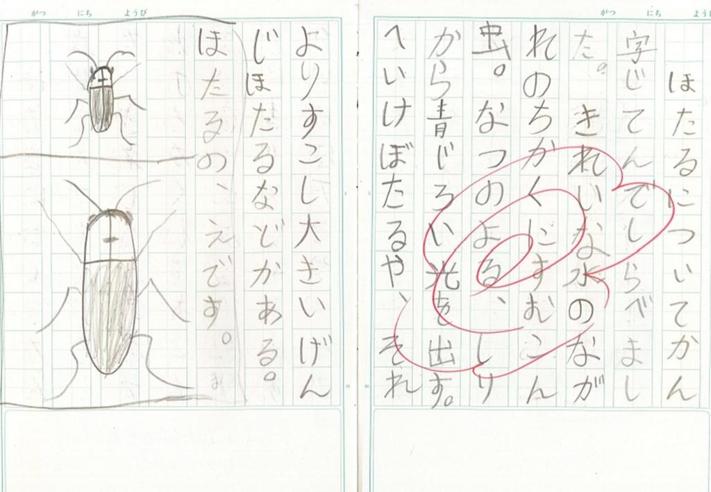 f:id:kaichinozomi:20170212100747j:plain