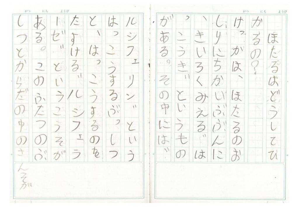 f:id:kaichinozomi:20170212100959j:plain