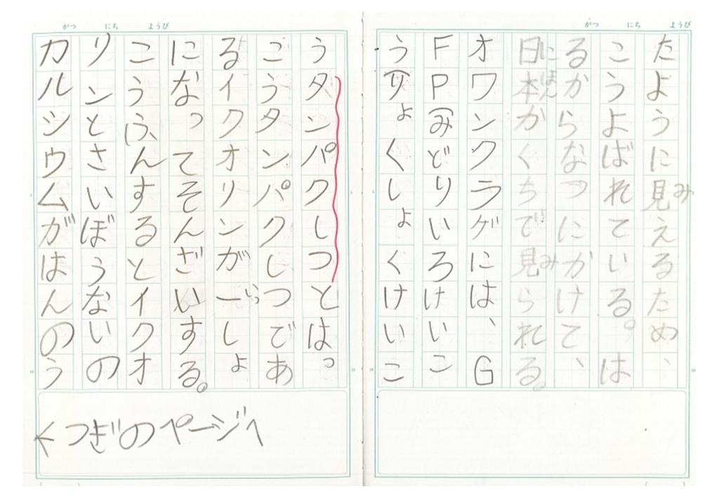 f:id:kaichinozomi:20170212101047j:plain