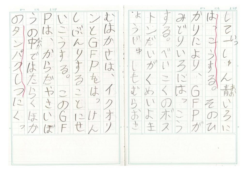 f:id:kaichinozomi:20170212101114j:plain