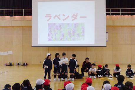 f:id:kaichinozomi:20170422090727j:plain