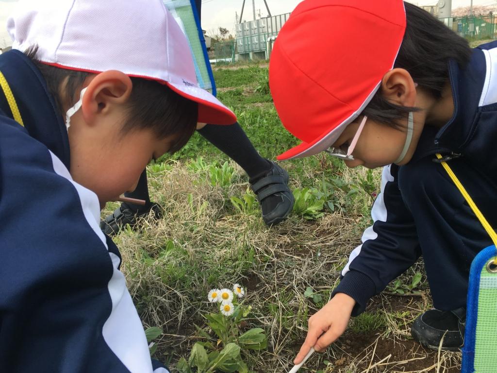 f:id:kaichinozomi:20170428174809j:plain