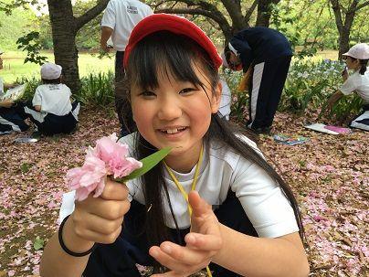 f:id:kaichinozomi:20170429162419j:plain