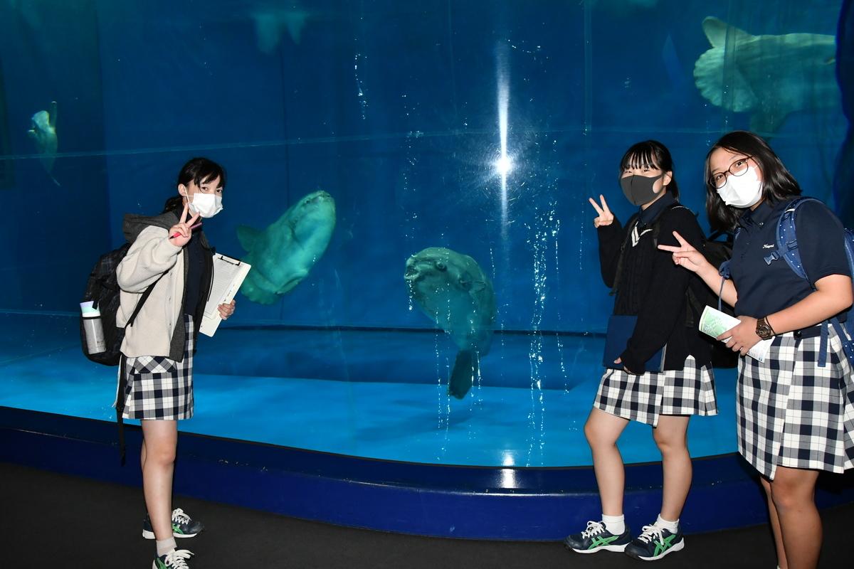 f:id:kaichinozomi:20201006112010j:plain
