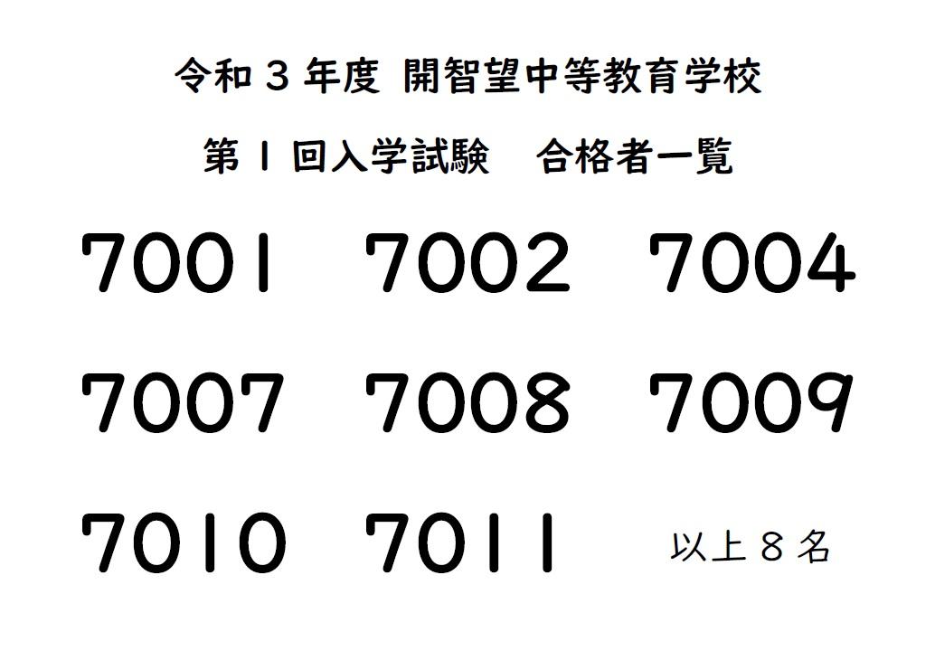 f:id:kaichinozomi:20201205190724j:plain