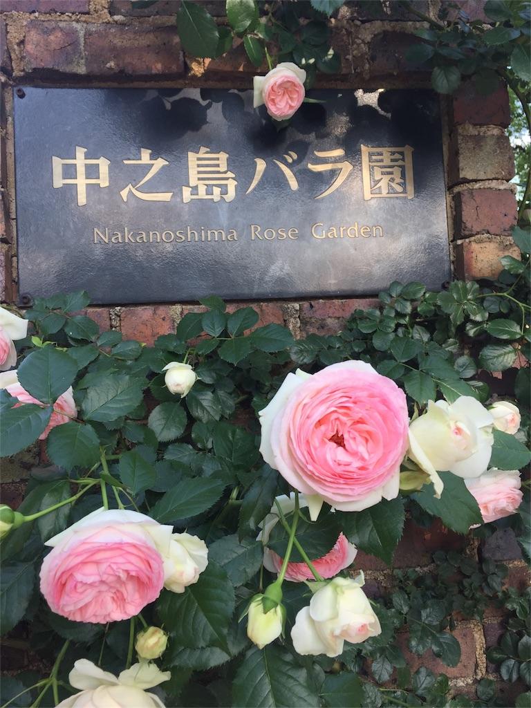 f:id:kaigaitenkintsuma:20170517165040j:image