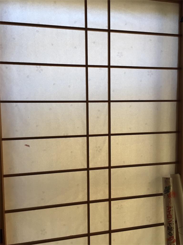 f:id:kaigaitenkintsuma:20170527211826j:image