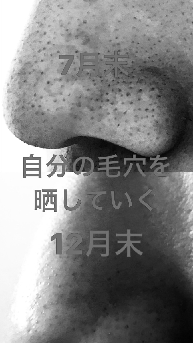 f:id:kaihelbeu:20210212175834j:plain
