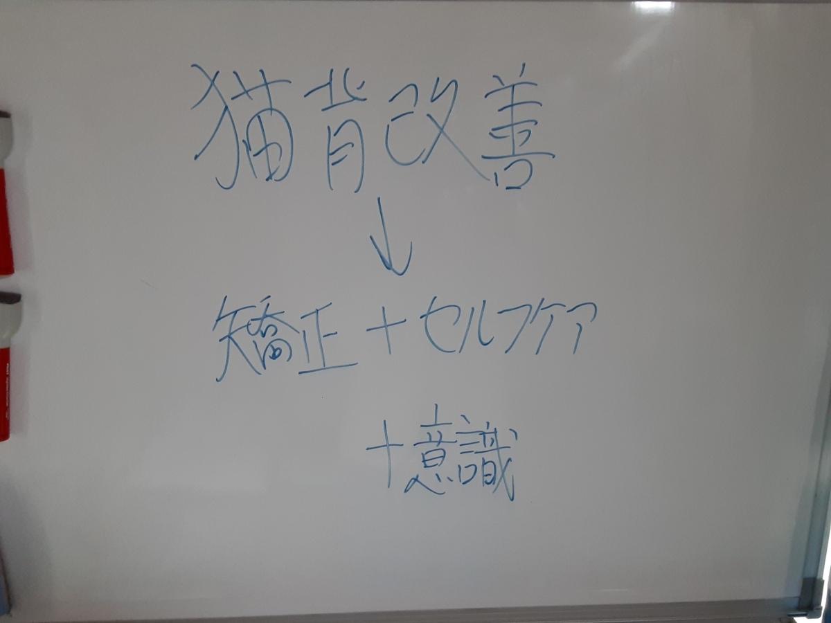 f:id:kaihelbeu:20210328072521j:plain