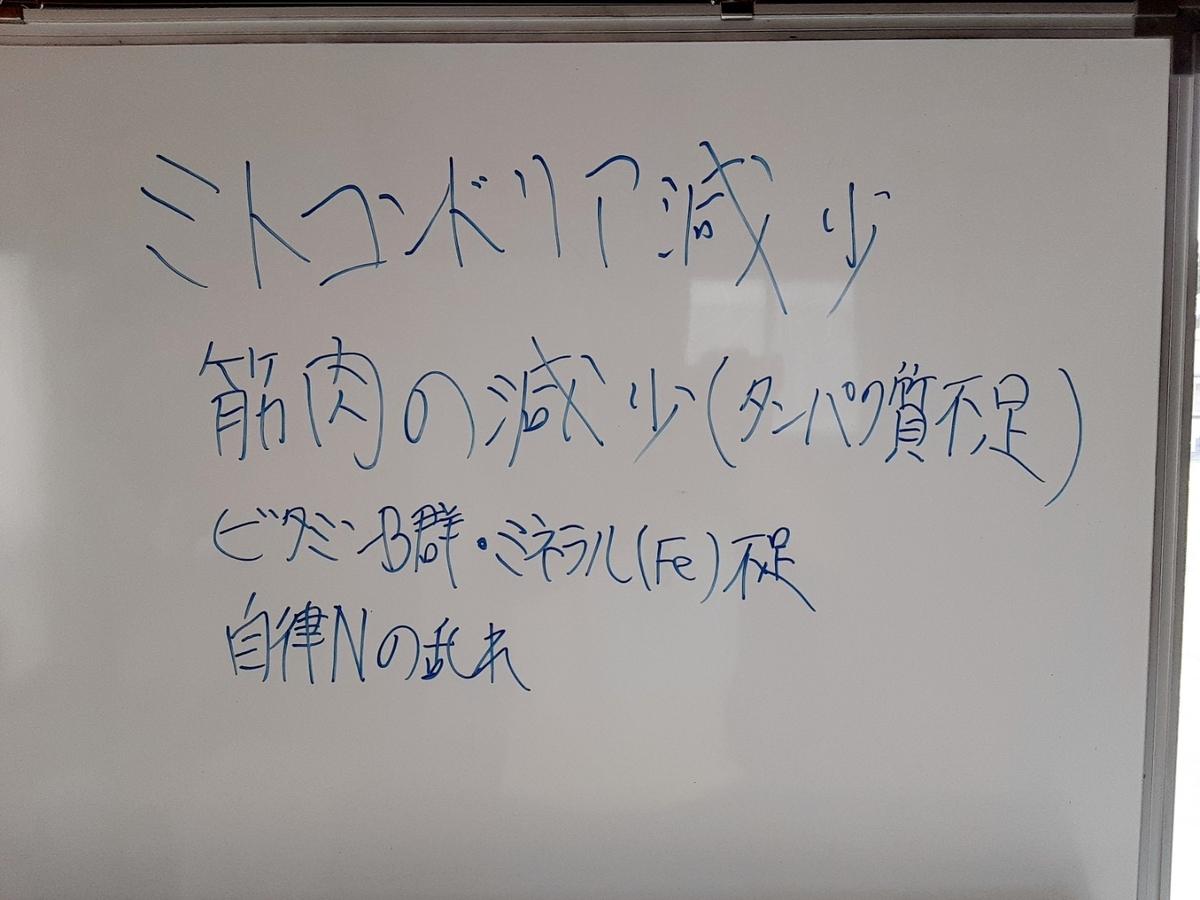 f:id:kaihelbeu:20210329140842j:plain